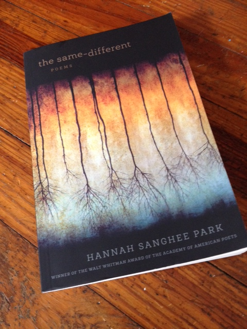 Hannah Sanghee-Park's The Same-Different | Faulkner House Books